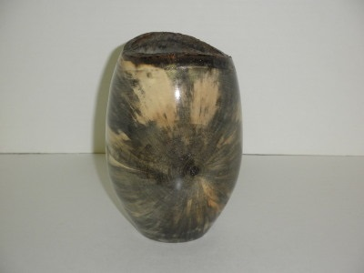 Eight Inch Buckeye Vase - Jan 2013